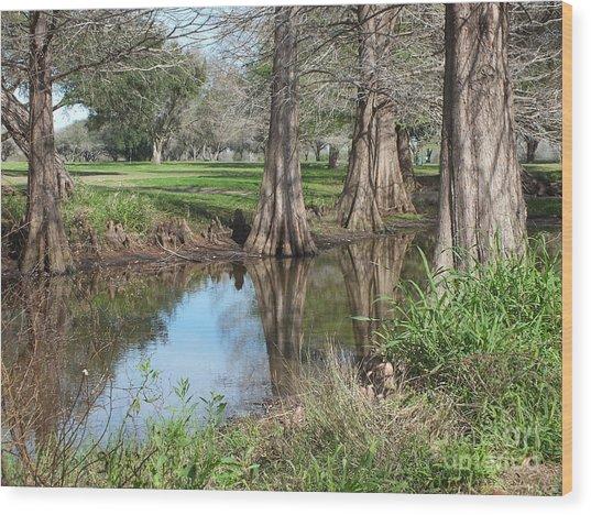 Peaceful Pond Wood Print by Tammy Herrin