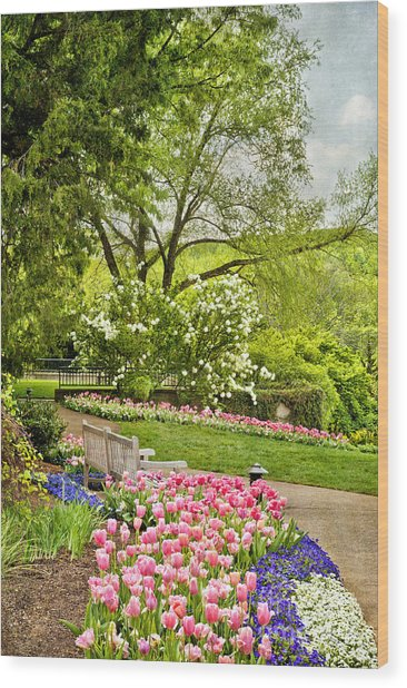 Peaceful Spring Park Wood Print