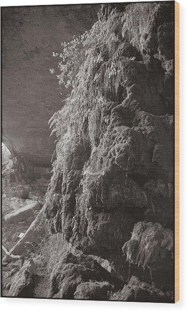 Pedernales Falls Tx Wood Print