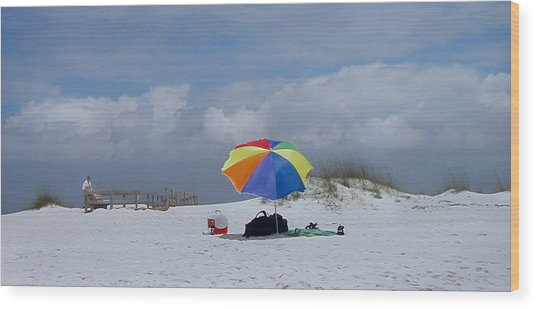 Pensacola Umbrella Wood Print by Ed Golden