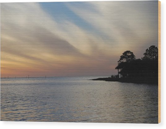 Wood Print featuring the photograph Perfect Florida Finish by Judy Hall-Folde