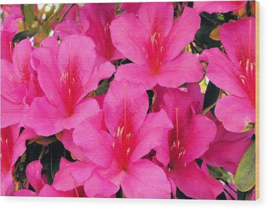 Perfume Wood Print by