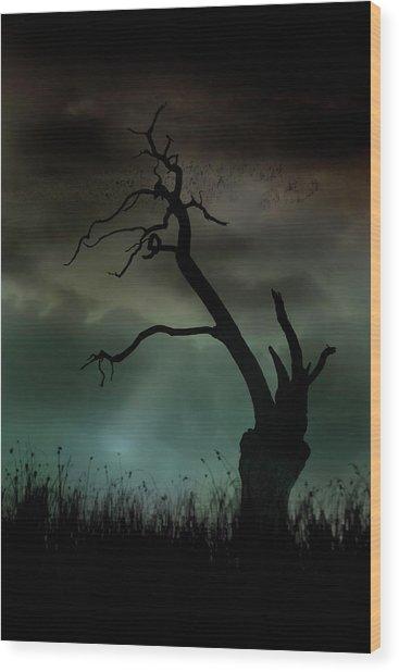 Petrified Wood Print