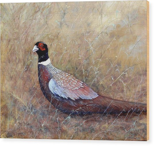 Pheasant In The Grass Wood Print