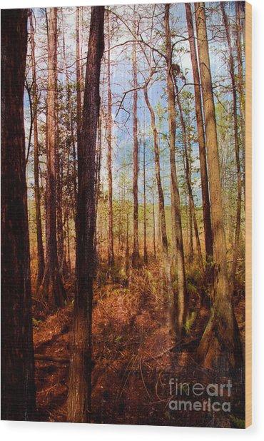 Phil's View Wood Print