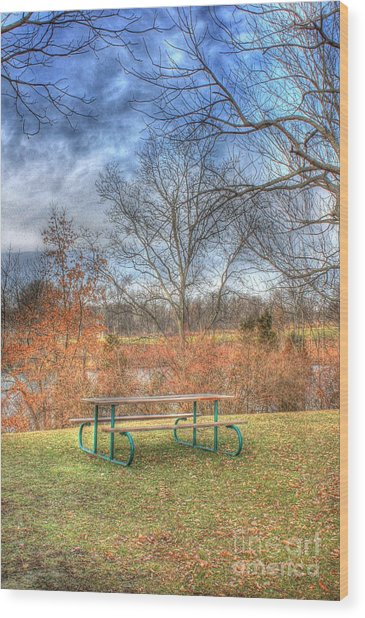 Picnic Table Wood Print