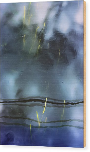 Picture Of Water Wood Print by Marisa Matis