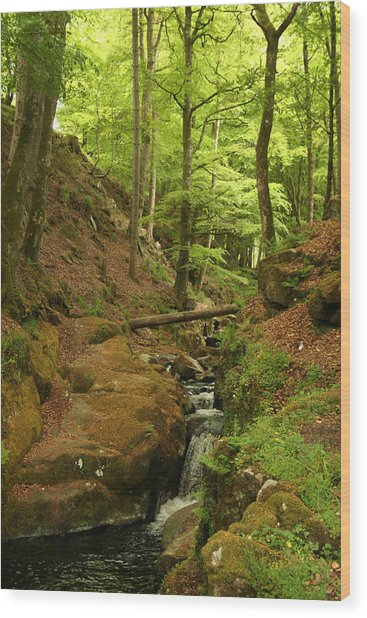 Picturesque Creek Wood Print