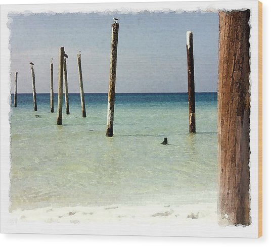 Pier Pilings Destin Fla Wood Print by Brenda Leedy