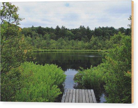 Pine Hole Pond Wood Print