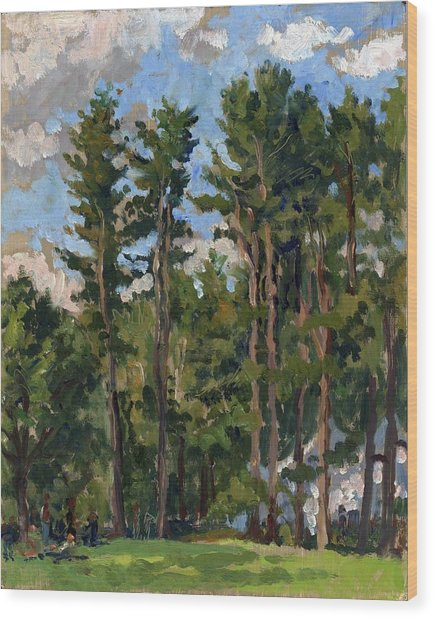 Pines At Tanglewood Wood Print