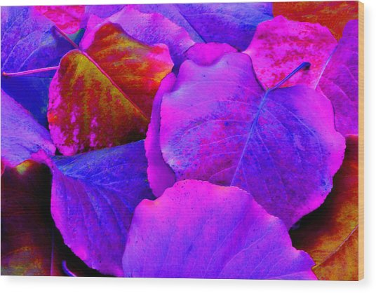 Pink And Purple Leaves Wood Print by Sheila Kay McIntyre