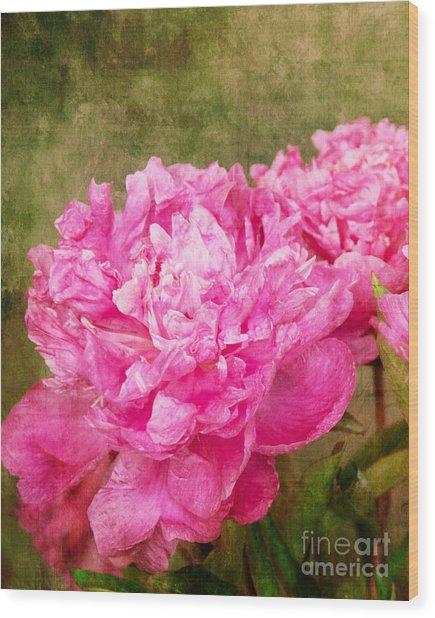 Pink Peony Texture 3 Wood Print