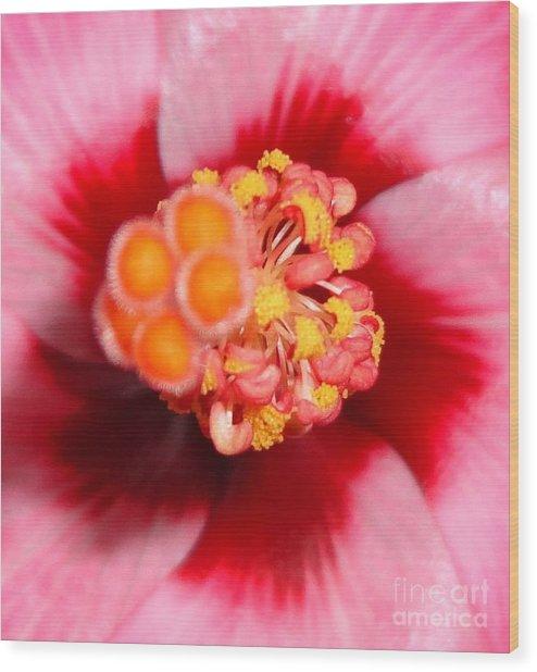 Pinwheel - Macro Wood Print by Maria Bonnier-Perez