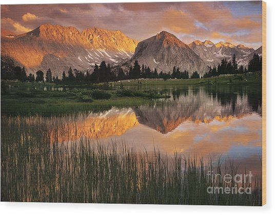 Pioneer Basin Wood Print by Buck Forester