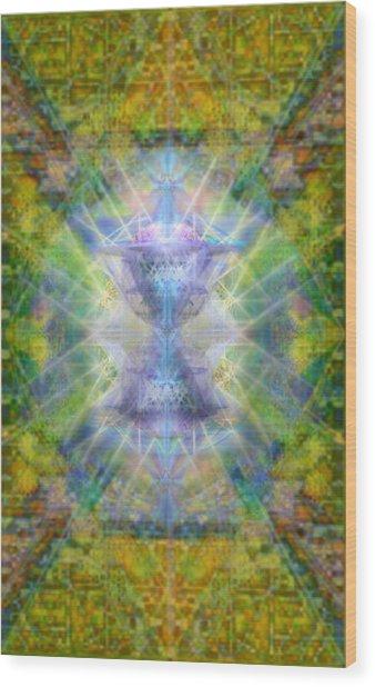 Pivortexspheres Lt On Chalicell Garden Tapestry Iv Wood Print