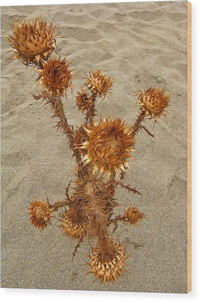 Plakias Crete Greece Fine Art Print Wood Print by Ian Stevenson
