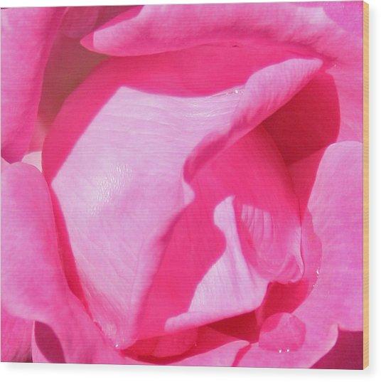 Pleasingly Pink Wood Print