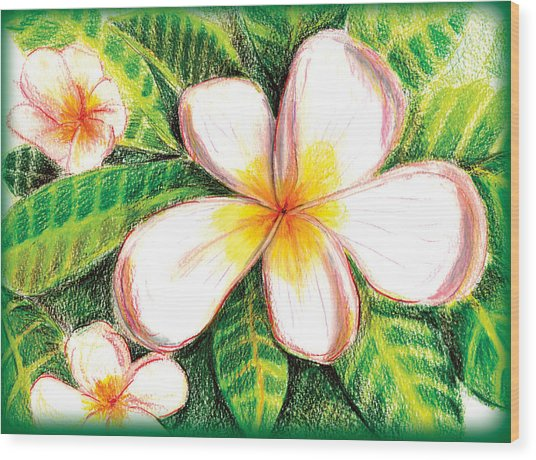 Plumeria With Foliage Wood Print