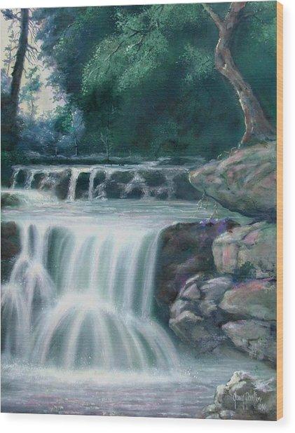Pocono Mountains Waterfall Wood Print