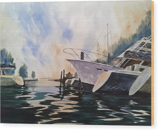 Point Clear--after A Summer Rain--- Mobile Bay Wood Print by Don F  Bradford