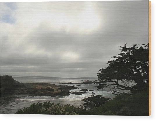 Point Lobos View Wood Print