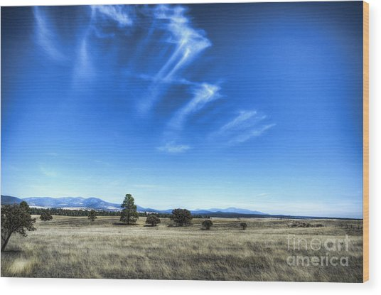 Point Of Pines - San Carlos Indian Reservation Wood Print