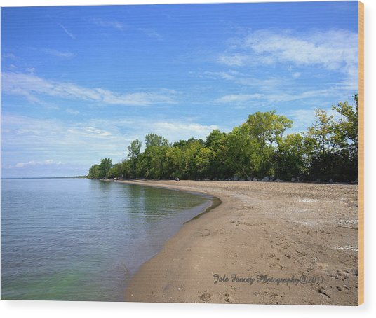 Point Pelee Beach Wood Print