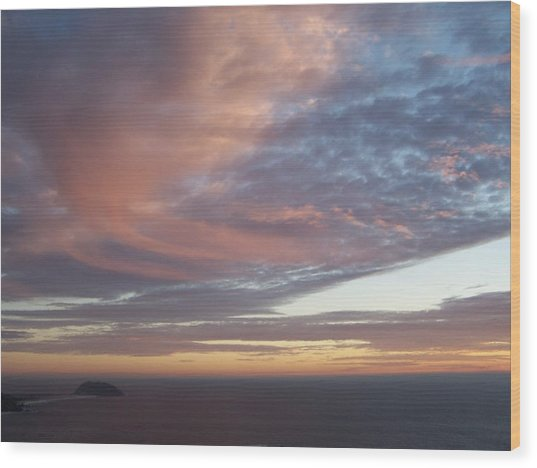 Point Sur Wood Print
