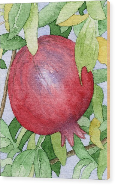 Pomegranate In Tree Wood Print by Eunice Olson
