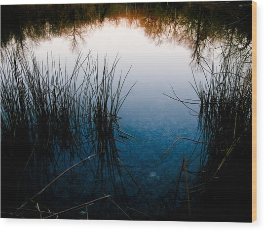 Pond Reflections Wood Print by Susan Adams