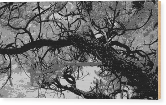Ponderosa Pine Wood Print