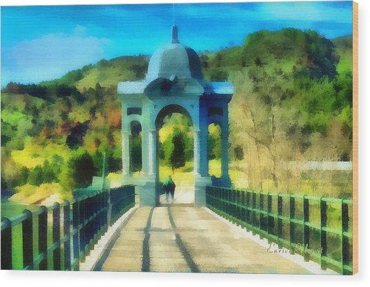 Ponte Sul Lago Di Giacopiane Wood Print