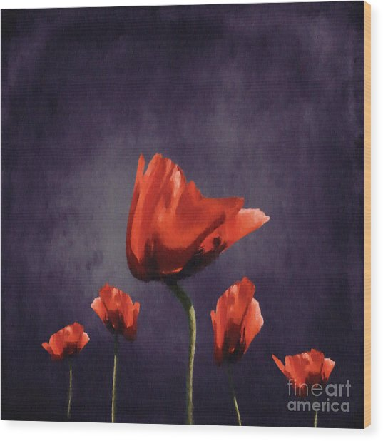 Poppies Fun 02b Wood Print