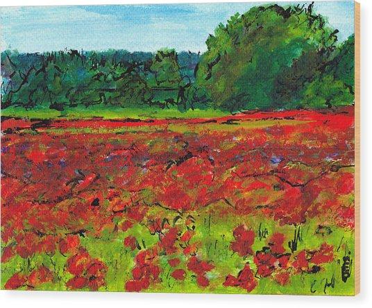 Poppy Fields Tuscany Wood Print by Jackie Sherwood
