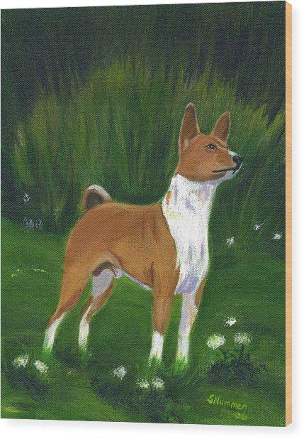 Portrait Of A Basenji Wood Print