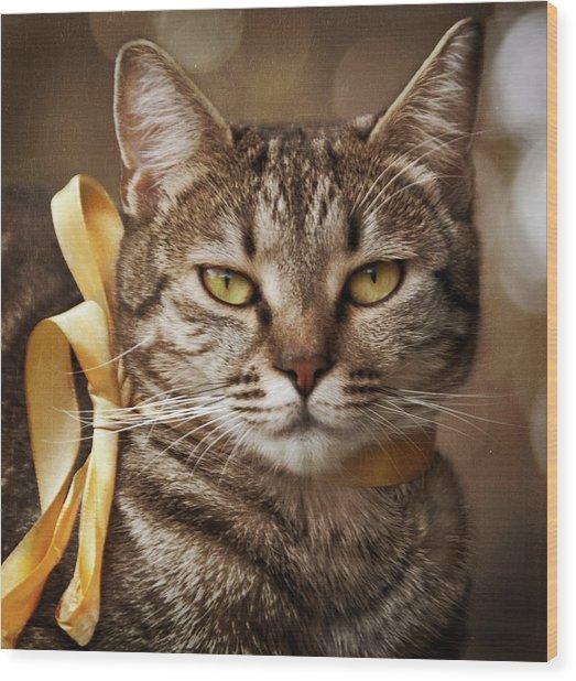 Portrait Of Tabby Cat With Yellow Ribbon Wood Print by by Sigi Kolbe