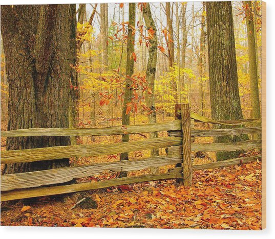 Post And Rail Wood Print