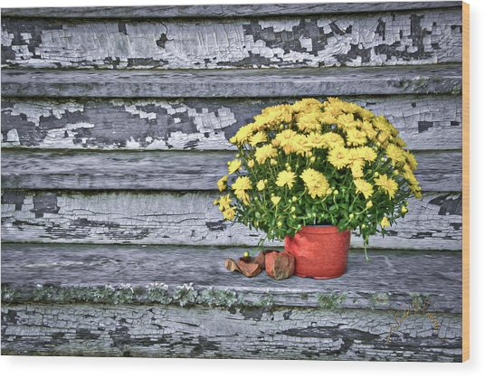 Pot Of Gold Wood Print by Williams-Cairns Photography LLC