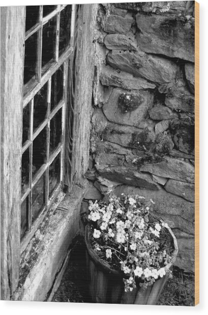 Pots And Panes Wood Print