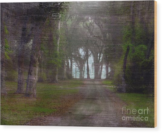 Prairie Road Wood Print