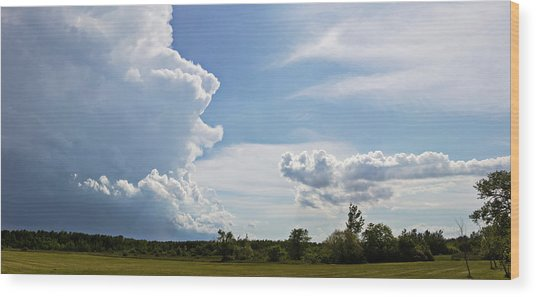 Prairie Storm Wood Print by Karen Dawson