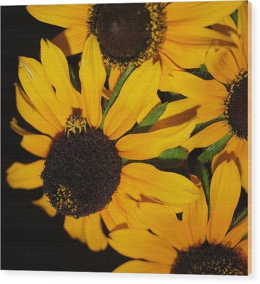Pretend I'm A Flower Wood Print by Irma BACKELANT GALLERIES