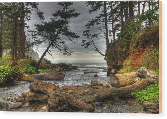 Primal Creek Wood Print