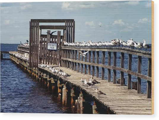 Private Pier Wood Print
