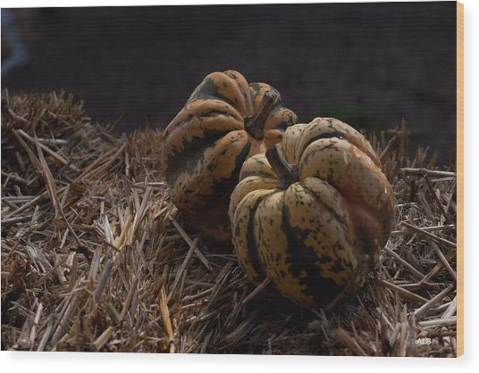 Pumpkins Wood Print by April Bielefeldt