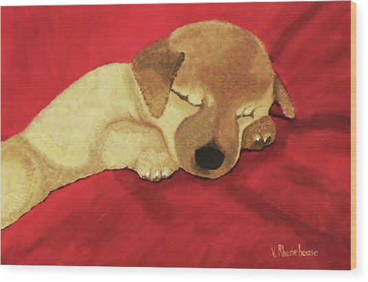 Puppy Nap Time Wood Print