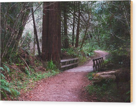 Purisima Creek Bridge Wood Print