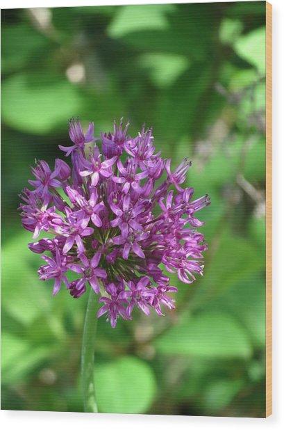 Purple Floral Wood Print