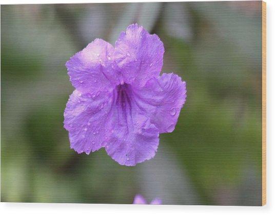 Purple Flower Wood Print